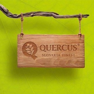 Quercus - Firemná identita